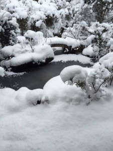 280125雪4