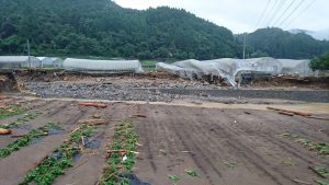 290706農業被害